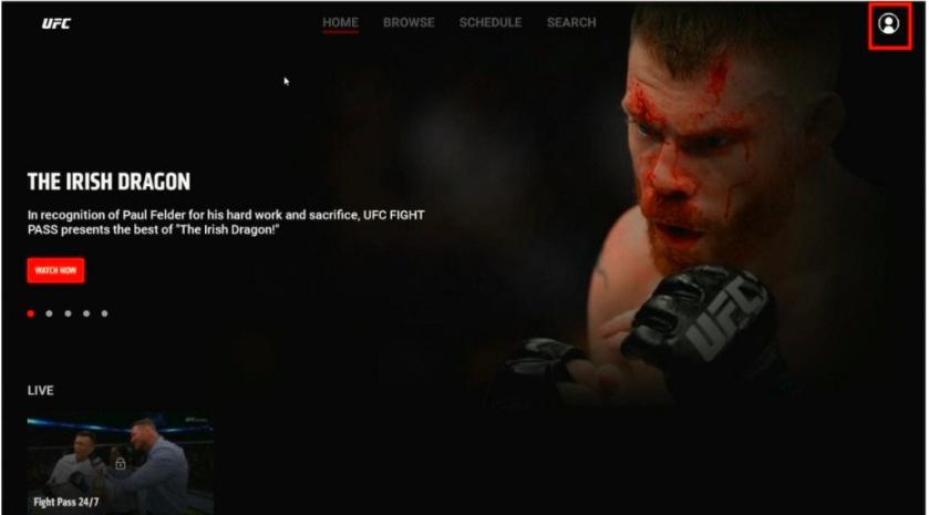 UFC interface